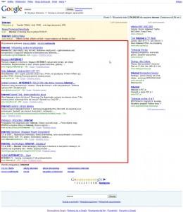 serp seo 260x300 Pozycjonowanie witryn   wyniki naturalne