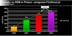 Wydatki na SEM w Polsce