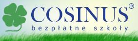 cosius Konsulting agencji SEM / SEO / WOMM Firstlevel dla firmy Cosinus