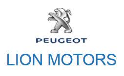 firstlevel dla lionmotors1 Peugeot Lion Motors wybrało agencję SEM SEO WOMM Firstlevel